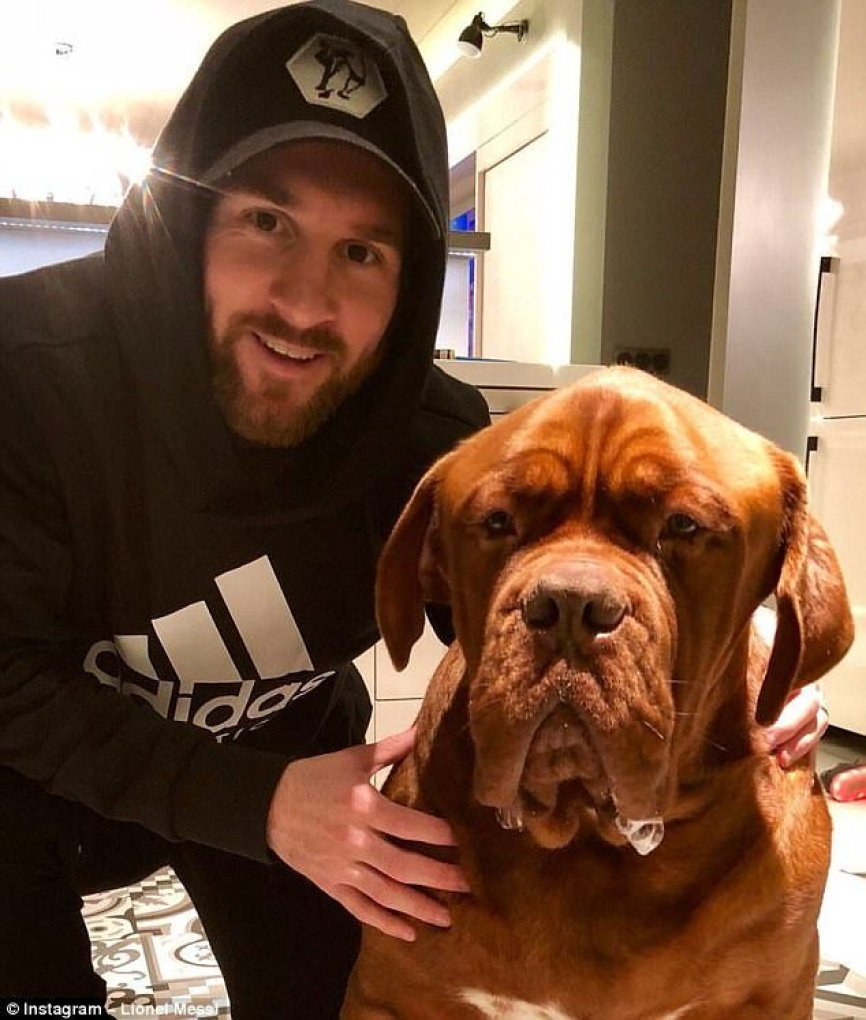 Photo of Lionel Messi And His Human-Sized Dog Named SENOR HULK… Takes A Nap At His Home (See Photos)