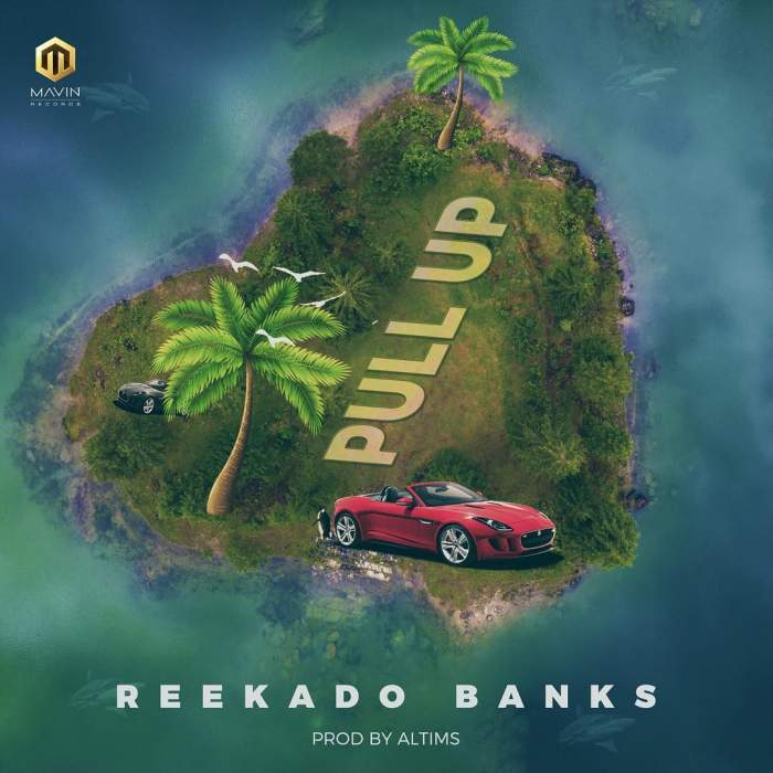 Photo of Reekado Banks – Pull Up (Prod By Altims x Mixed By Swaps)