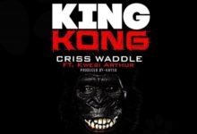 Photo of MP3+VIDEO: Criss Waddle Ft Kwesi Arthur – King Kong (Prod By KaySo)