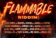Flammable Riddim