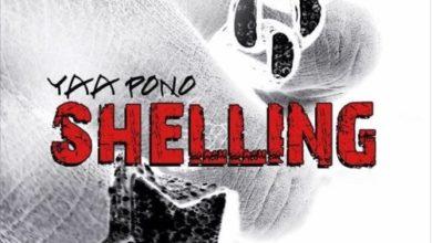 Photo of Yaa Pono – Shelling (Prod. By Ray Rock)