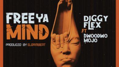 Diggyy Flex Ft Dwoodwo Mojo