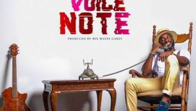 Kwabena Kwabena - Voice Note