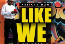 Article Wan Like We