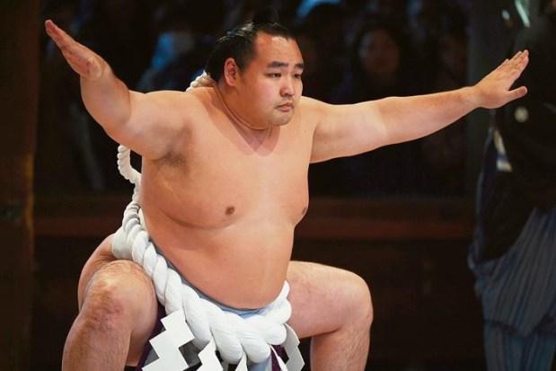 Sumo Wrestler Shobushi