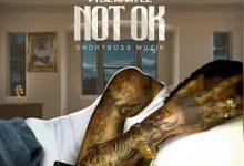 Photo of Vybz Kartel – Not Ok (Prod. By Vybz Kartel Muzik)