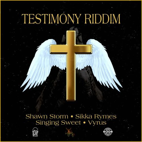Photo of Shawn Storm – Possible (Testimony Riddim)