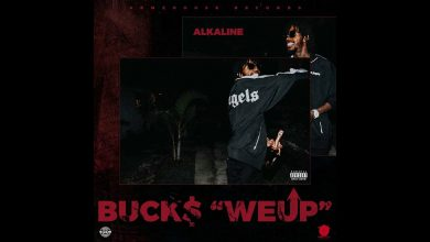 Alkaline - We Up