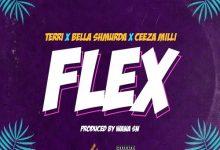 Photo of Terri x Bella Shmurda x Ceeza Milli – Flex
