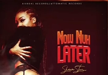 Shawn Storm - Now Nuh Later