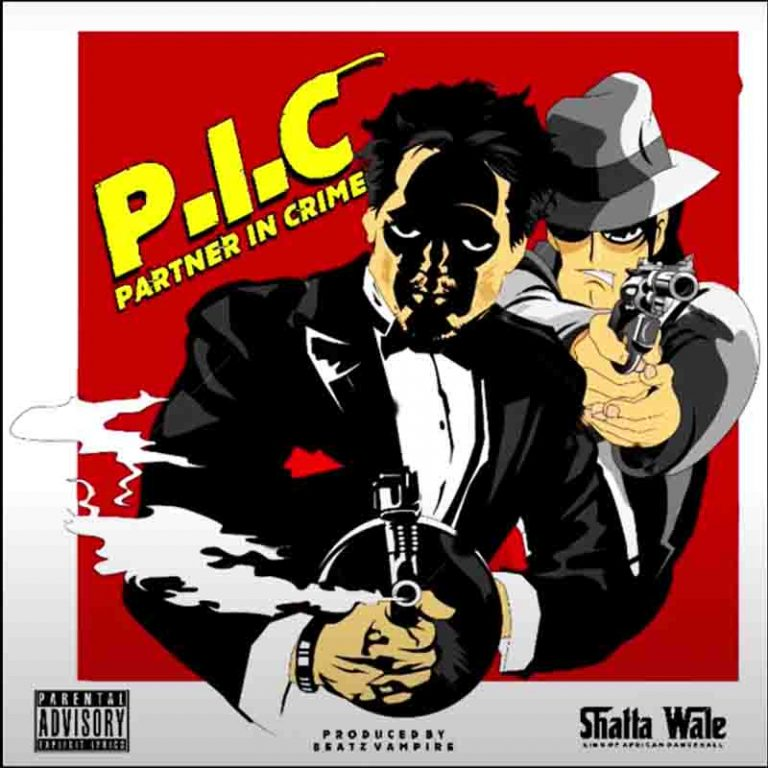Shatta Wale - Partner In Crime (PIC)