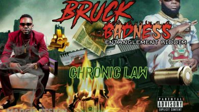 Chronic Law - Bruck Badness