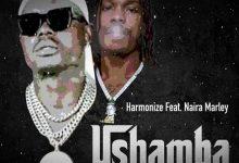Harmonize ft Naira Marley Ushamba Remix