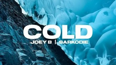 Joey B ft Sarkodie Cold