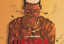 Lil Frosh Oshaa