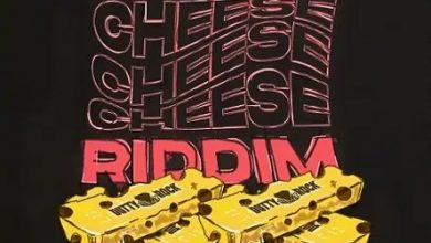 Swiss Cheese Riddim