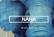 Wisa Greid Nana