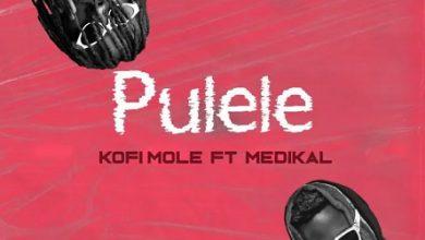 Kofi Mole Ft Medikal Pulele